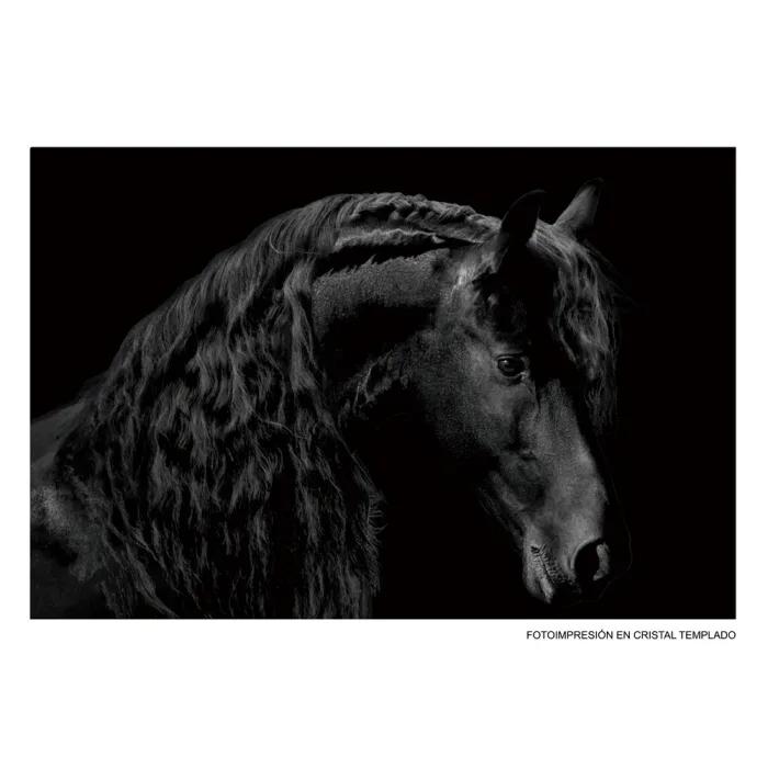 28196-cuadro-fotoimpresion-caballo.jpg