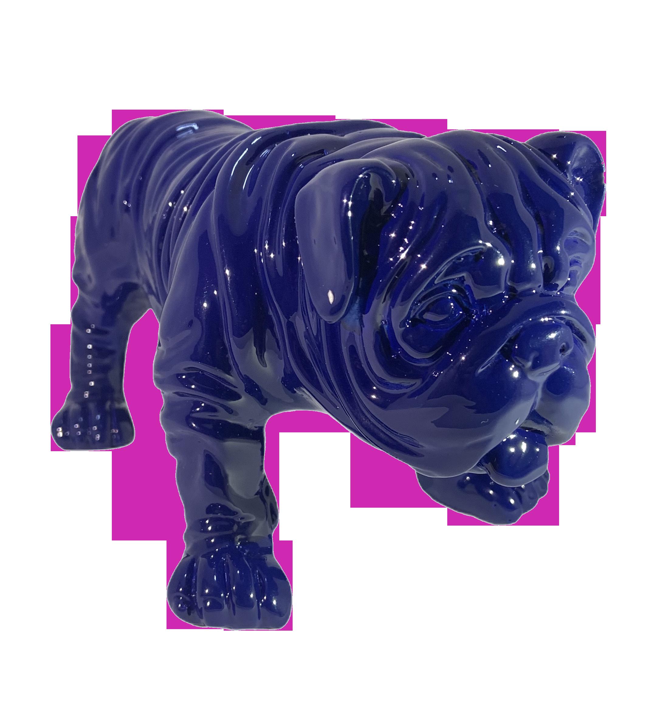 Bulldog Azul Cian