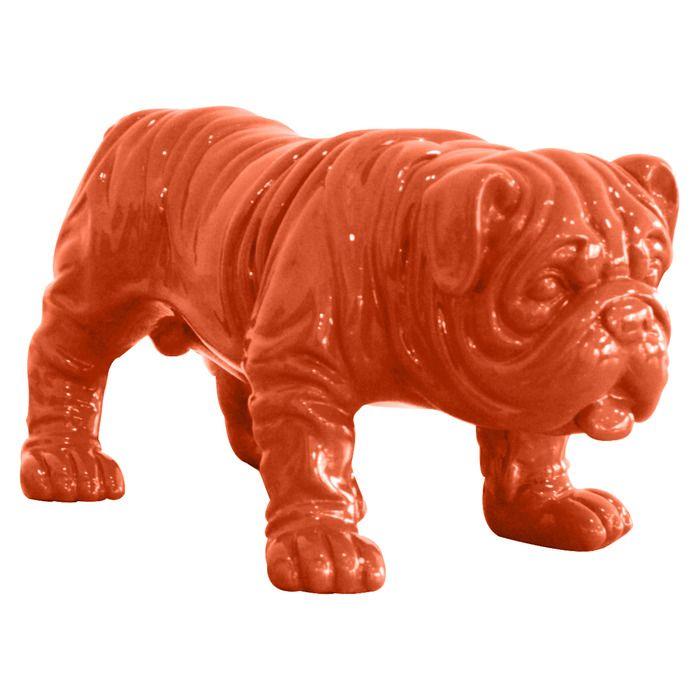 Bulldog Naranja